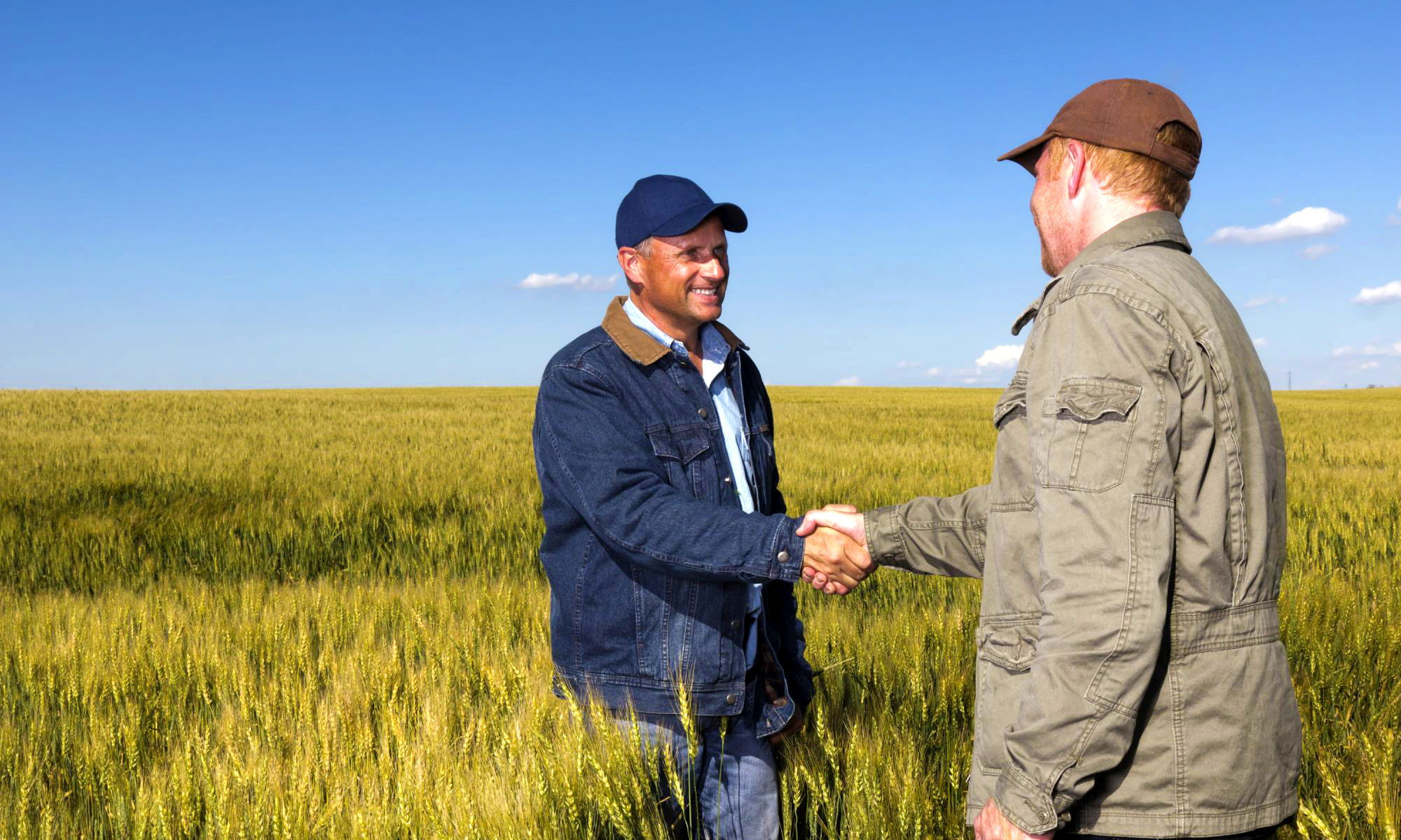 networking agricultura